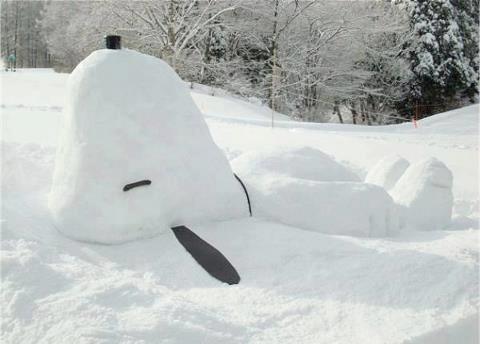 snowsnoopy