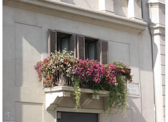 From Rome, Italy. Piazza Novona. Photo Credit: Chrissie Werzinsky.