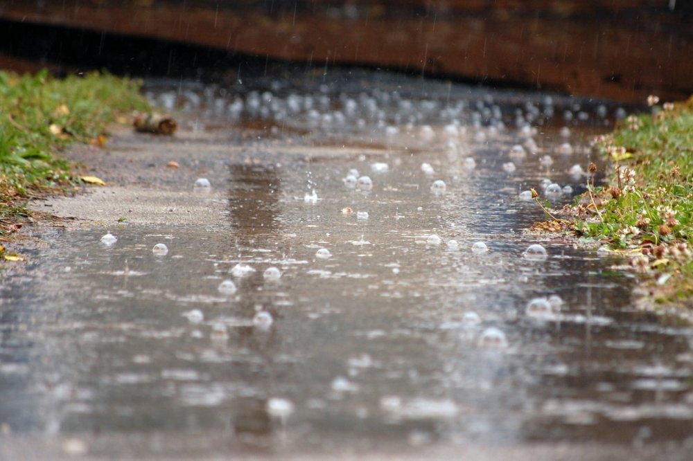 rainpuddles