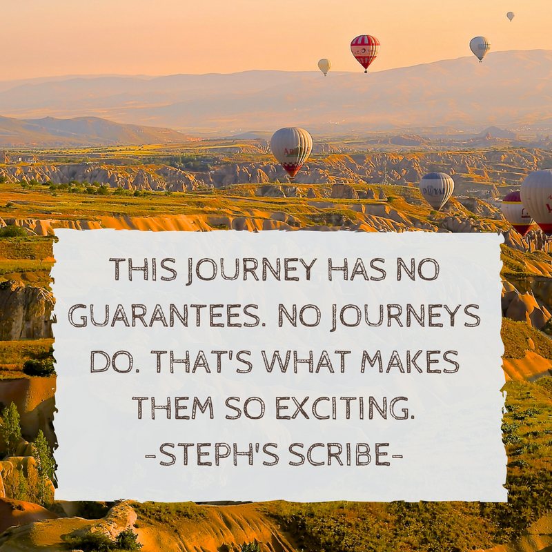 This journey has no guarantees. No journeys do. That's what makes it so exciting.